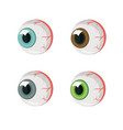 human eyes four eyes different colors isolate vector image