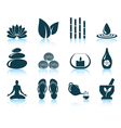 Set of spa icons vector image
