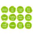 green organic labels bio emblems vector image