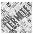 Homemade Termite Killer Word Cloud Concept vector image vector image