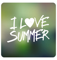 love summer vector image vector image