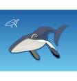 The blue whale vector image