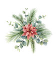 watercolor christmas bouquet with fir vector image vector image