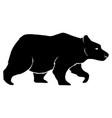 bear black symbol vector image