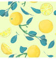 botanical hand drawn citrus lemon or orange vector image