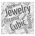 Cubic Zirconia and Sterling Silver Word Cloud vector image vector image