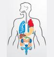 Human organs and human body - vector image