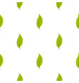 narrow toothed green leaf pattern seamless vector image vector image