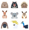 australian animals flat icons vector image vector image