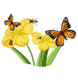 close up butterfly with flowers isolated