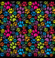 colorful background with paws vector image vector image
