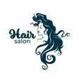 hairdresser and hairstyle salon logo label emblem vector image vector image