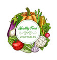 healthy vegetables and greens sketch banner vector image vector image