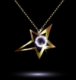 pendant with a large star vector image vector image