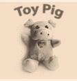 pig cute toy vector image