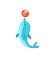 cute dolphin playing with ball cartoon sea animal vector image vector image