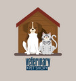 dog and cat in wooden house pet friendly vector image