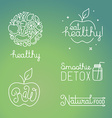healthy food and organic fruits concepts vector image vector image