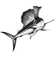 black sailfish vector image vector image