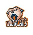 Cat Mascot vector image