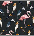 seamless pattern with junngle bird such as vector image vector image