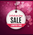 valentine s day love and feelings sale background vector image