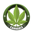 cannabis leaf medical logo vector image vector image