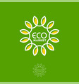 eco market logo letters and sunflower as sun vector image vector image