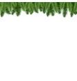 fir-tree branch border vector image vector image