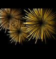fireworks on a black background vector image