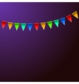 Holiday Birthday Colorful Flags Background vector image vector image