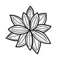 lotus flower floral hand drawn design sign vector image vector image