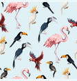 seamless pattern with junngle bird vector image vector image