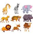 set wild animal vector image