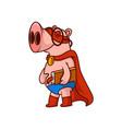 smiling pig superhero holding book humanized vector image