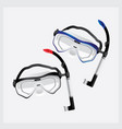 snorkel and mask for diving vector image vector image