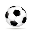 soccer ball isolated on white background with vector image