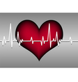 red heart on grey with cardiogram vector image