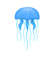 blue and cyan jellyfish vector image