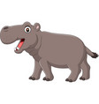 cartoon smiling hippo isolated on white background vector image vector image