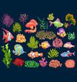 cute kid underwater set aquarium baby fish vector image