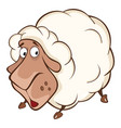 cute sheep cartoon character vector image vector image
