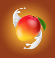 mango in milk splash yogurt dessert realistic vector image vector image