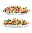 vegetable salads vector image