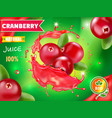 cranberry juice drink splash advertising vector image vector image