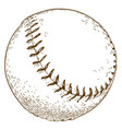 engraving of baseball ball vector image vector image