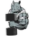 Ferocious strong rhinoceros vector image vector image