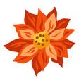 merry christmas of poinsettia flower vector image