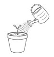 set watering can and plant vector image vector image