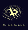 bitcoin blockchain banner vector image